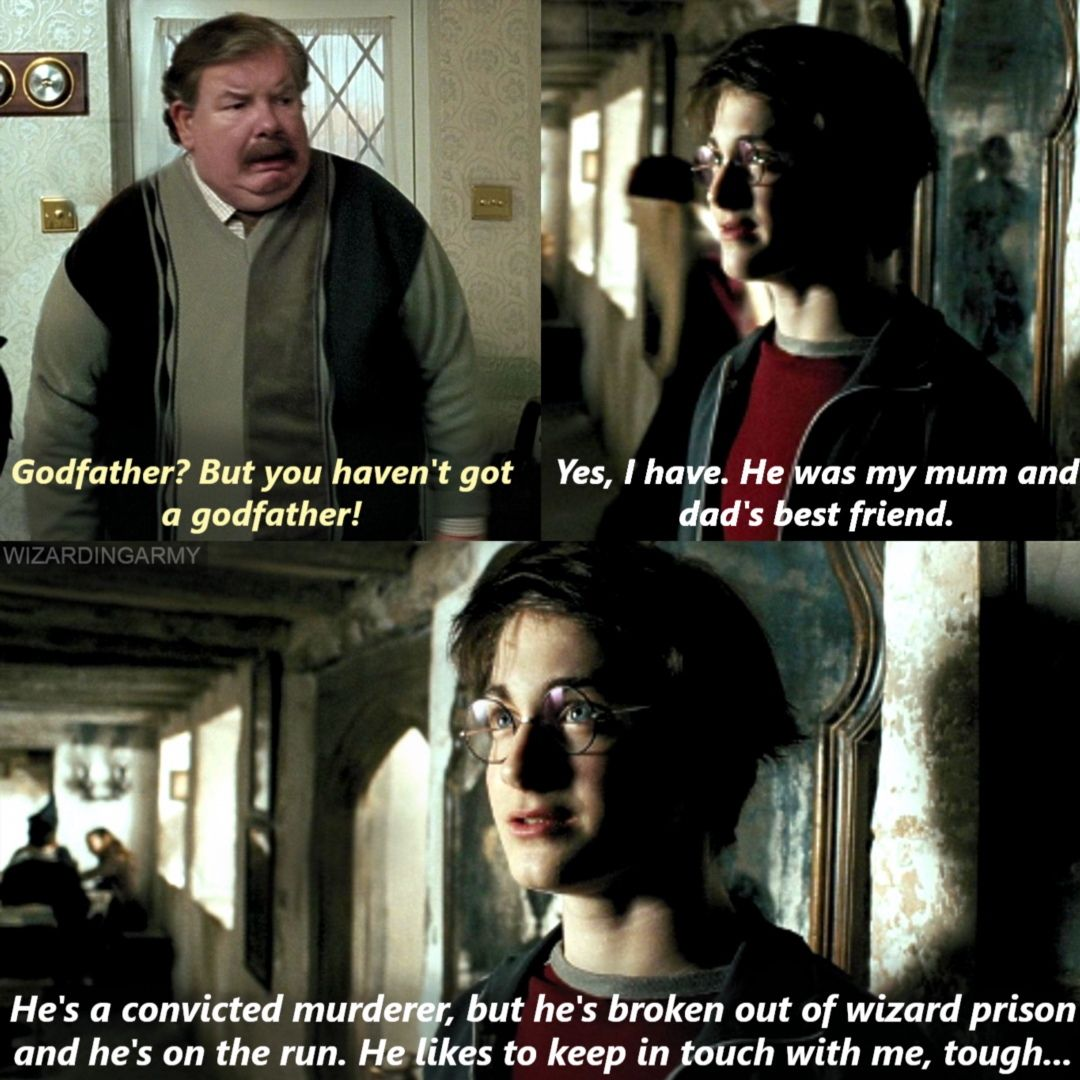 I Died When I Read This In The Book Harry Potter Universal Harry Potter Funny Harry Potter World