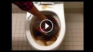 Comment Nettoyer Des Wc nettoyer les wc avec du coca [video | art, insolite et autres trucs