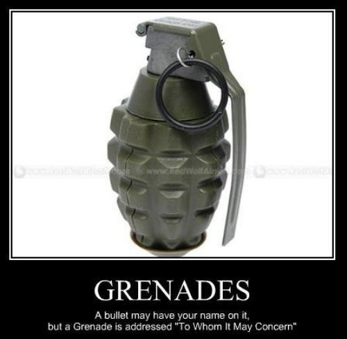 Inspirational Pictures Funny Motivational Pictures Image Funny Motivational Pictures Very Demotivational Grenade