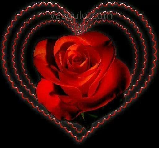 Roses and Hearts