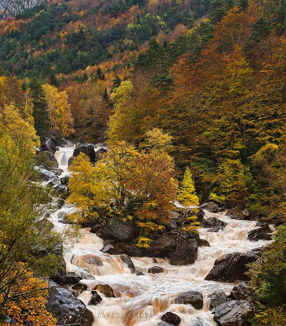 Spain Selva De Oza Oza Forest Hecho Valley Aragon Wonders Of The World Photo Natural Beauty