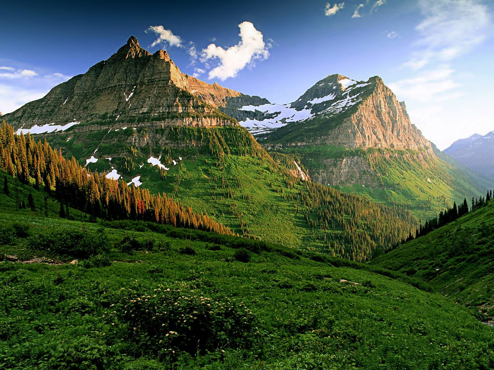 Glacier National Park National Parks Glacier National Park Montana Beautiful Mountains