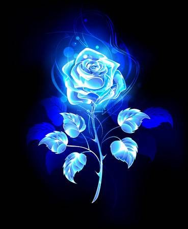 Blooming Abstract Rose From Blue Flame On Black Background Blue Roses Wallpaper Black And Blue Wallpaper Rose Wallpaper
