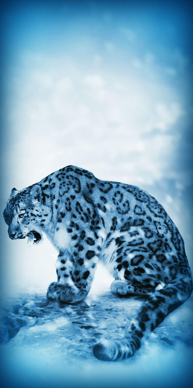 ᙡᓵᒶᕲ & ᖴᖆᘿᗴ Lion sculpture, Animals, Wallpaper