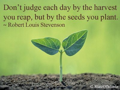 Don't Judge Each Day By The Harvest You Reap But By The Seeds You Best Planting Seeds Inspirational Quotes
