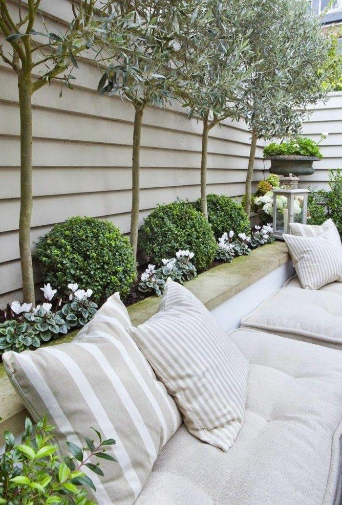 Solit rpflanzen pflanzen schreibt man nicht nur for Gartengestaltung olivenbaum