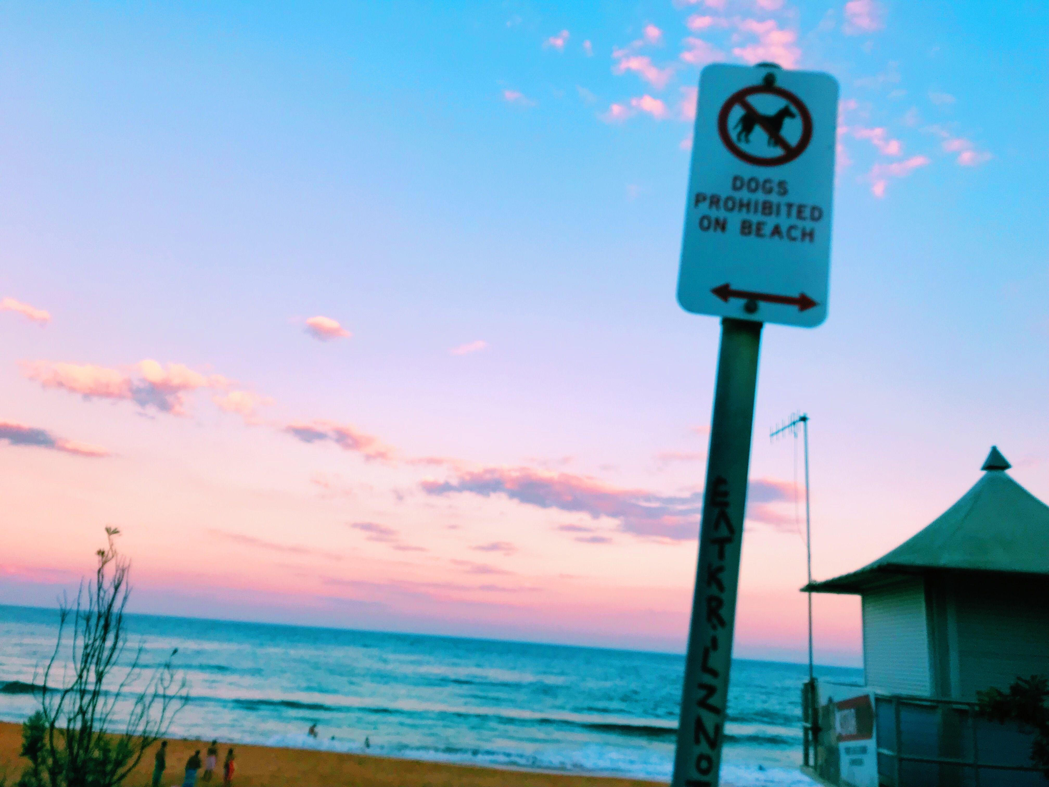Pinterestisabellawillo summer beach tumblr sunsets pinterestisabellawillo summer beach tumblr sunsets summertime voltagebd Choice Image
