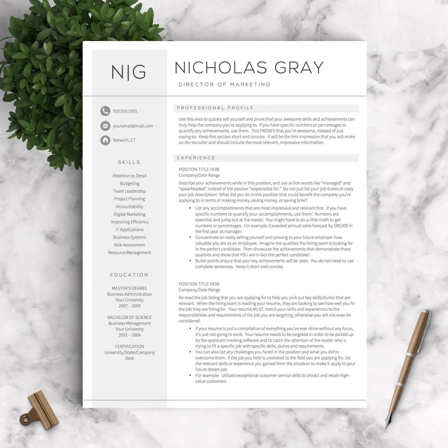 Professional Resume Templates For Word And By Landeddesignstudio