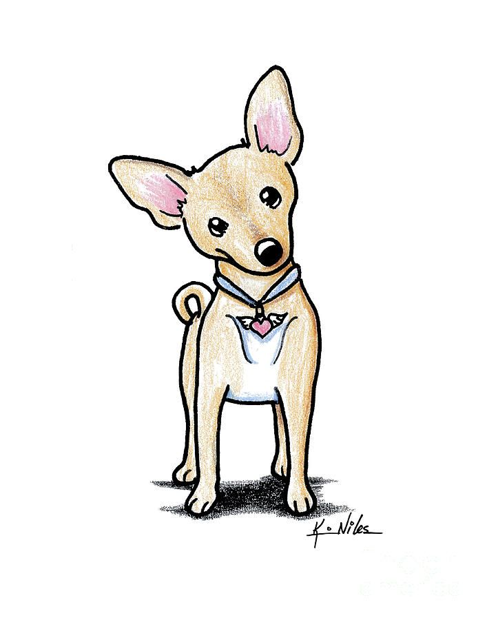 Heart Wings Chihuahua In 2020 Chihuahua Drawing Cartoon