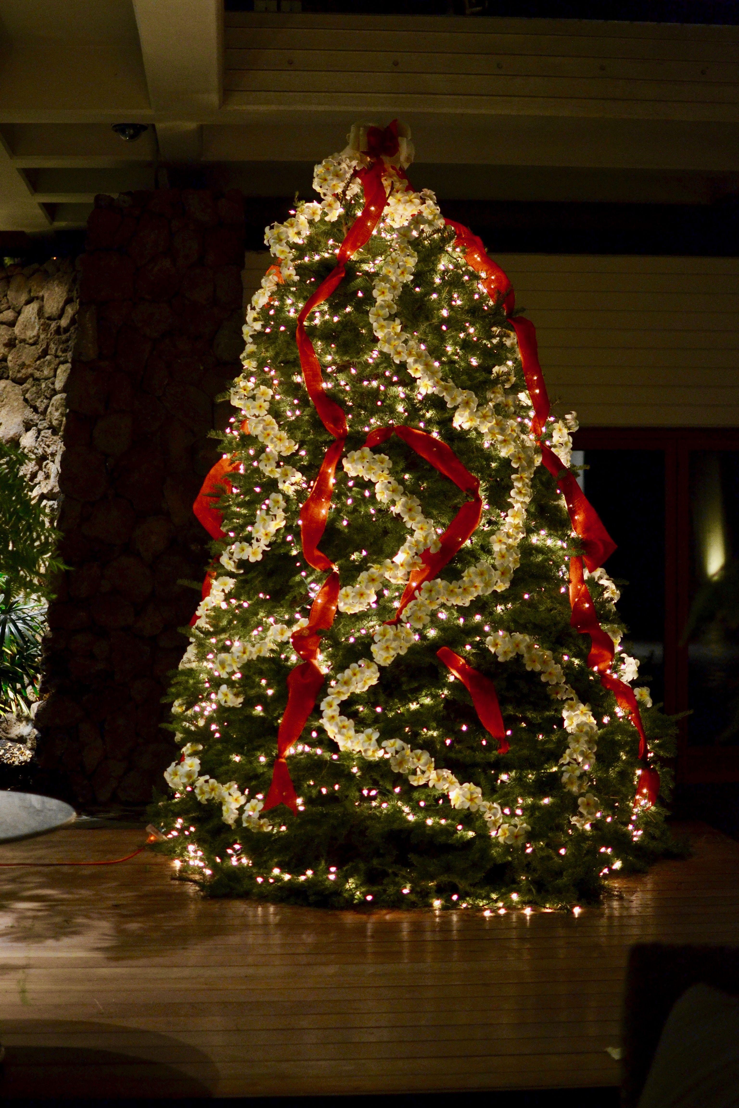Mauna Kea Beach Hotel Plumeria Christmas Tree Kui I Florist Hilo Hawaii Kuiandiflorist
