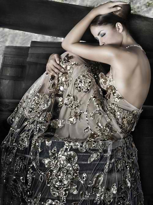 I think the embellishments in this dress are very pretty. I like how they are on a sheer tulle.