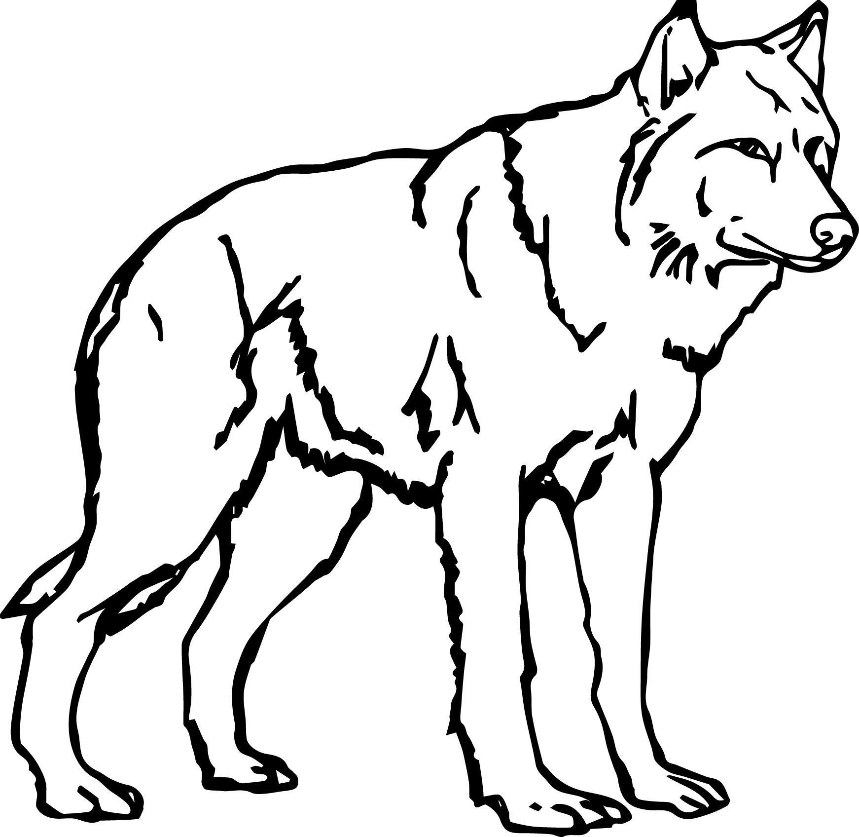 Марта, раскраска волк прикольный