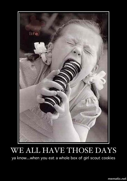 Just One Of Those Days Funny Quotes Haha Funny Laugh