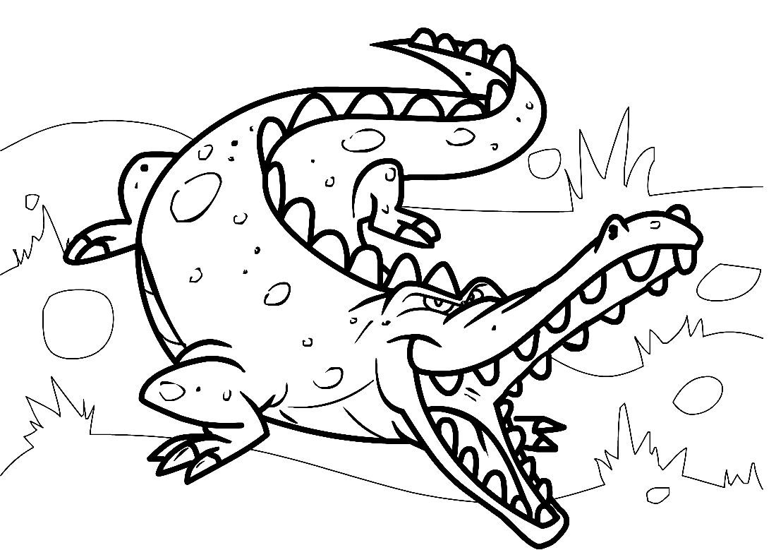 S Search Q Cute Alligator Amp Client