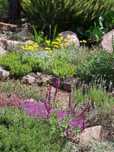 Blühender Steingarten Deko und DIY Pinterest Garden pictures