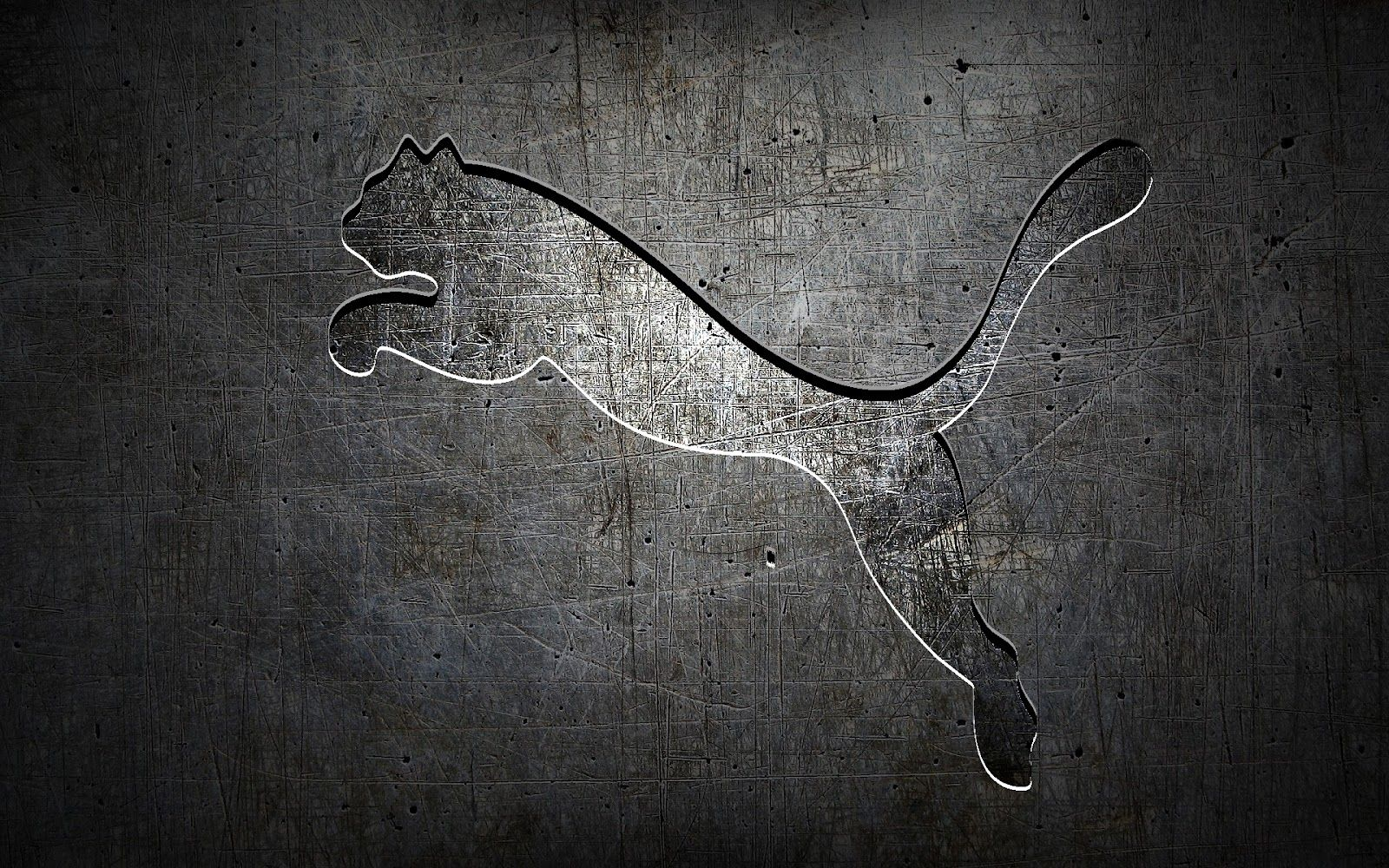 Grey Puma Logo Top Best Hd Wallpaper Image Picture Free