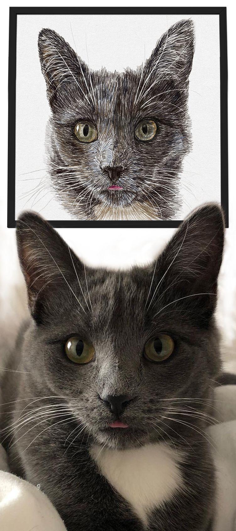 Custom Cat Drawing Gift for pet lovers   Cat Portrait Custom   Etsy