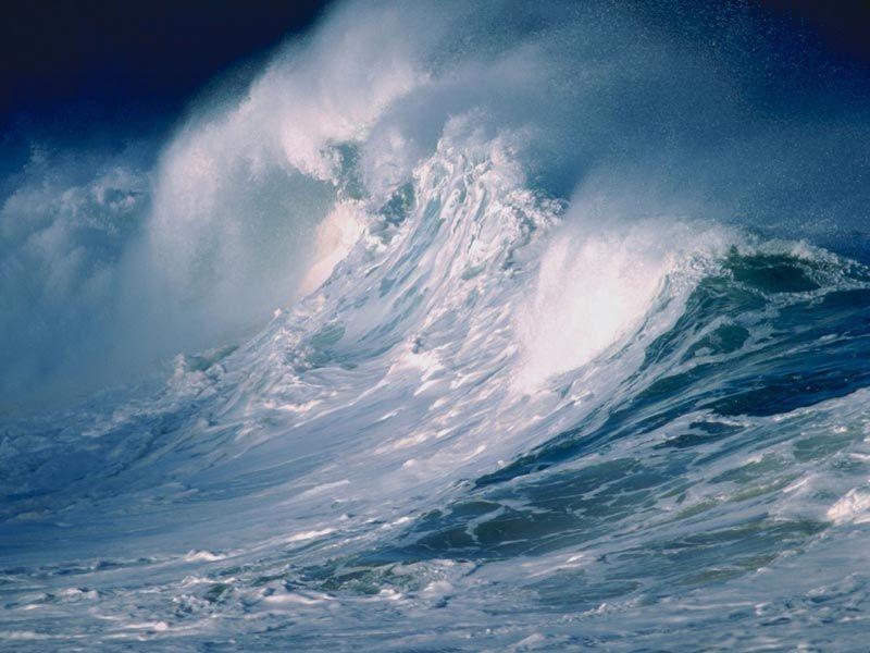 Storm aan de Zeeuwse kust!