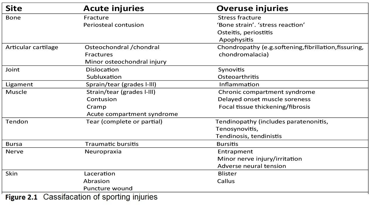 Acute Sports Injuries Exercise Professional Pinterest Sports