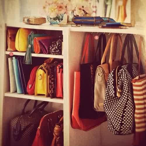 Bag Organizer In Closet
