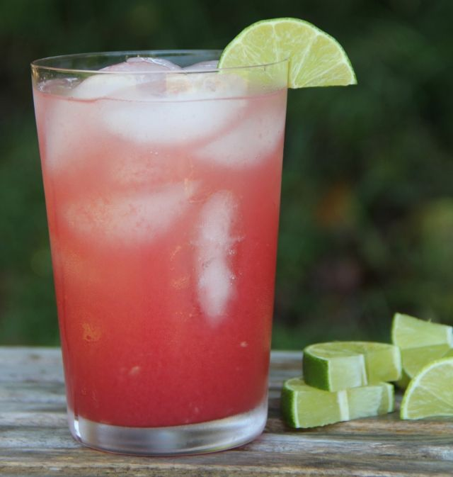 watermelon/vodka agua fresca
