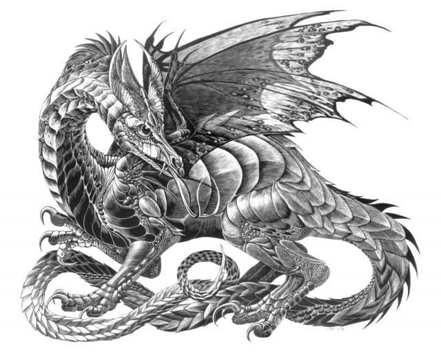 Hydra Dragon Colouring Pages Drachen Drachen Bilder Bilder
