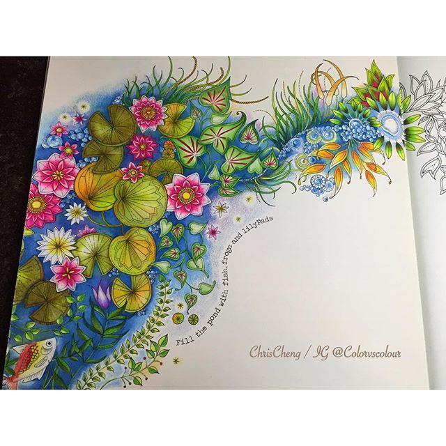 Colorvscolour Chris Cheng On Instagram Adult ColoringColoring BooksJohanna Basford Secret GardenLily PondColor Pencil DrawingsWater Lilies Video