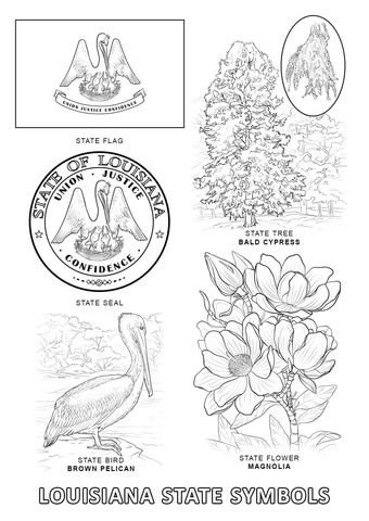 Louisiana State Symbols Coloring Page From Louisiana Category