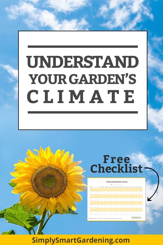 Gardening 101 Understand Your Garden's Climate in 5 Steps is part of garden Layout Map - Do you struggle to understand your garden's climate and microclimates  There's more to it than knowing your gardening
