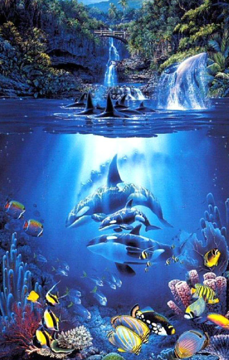 The Sacred Pool Christian Riese Lassen Dolphin Art