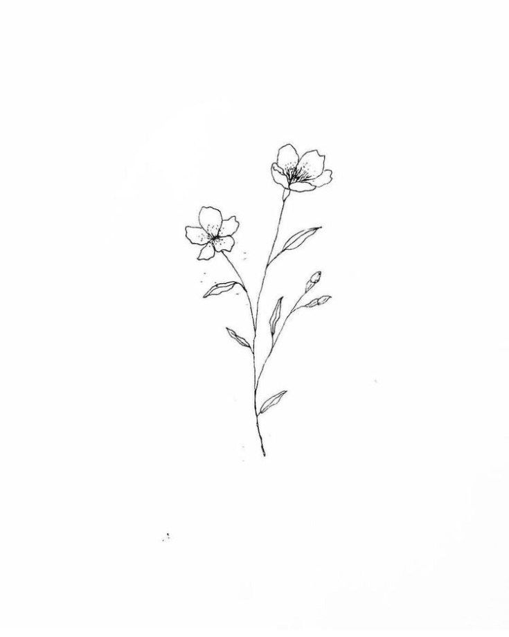 It's just a picture of Rare Small Flower Drawing
