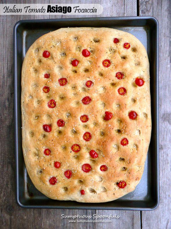 Italian Tomato Asiago Focaccia ~ Sumptuous Spoonfuls #yeast #bread #recipe #comfortfood