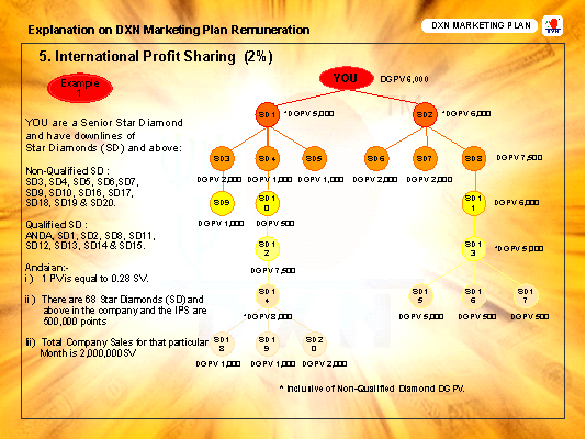 Understand The Dxn Marketing Plan  Dxn Marketing Plan