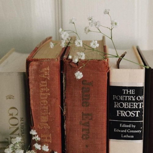 Pinterest M A C E Y Book Aesthetic Book Photography Books