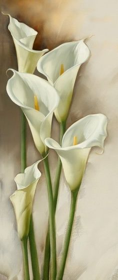 White Calla Lilies Watercolor Flowers Art Painting Flower Painting