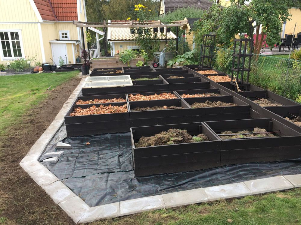 new kitchen garden with raised beds 40 pics of this
