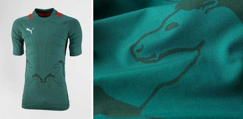 Puma - 2012 african football kits 02149fd3e