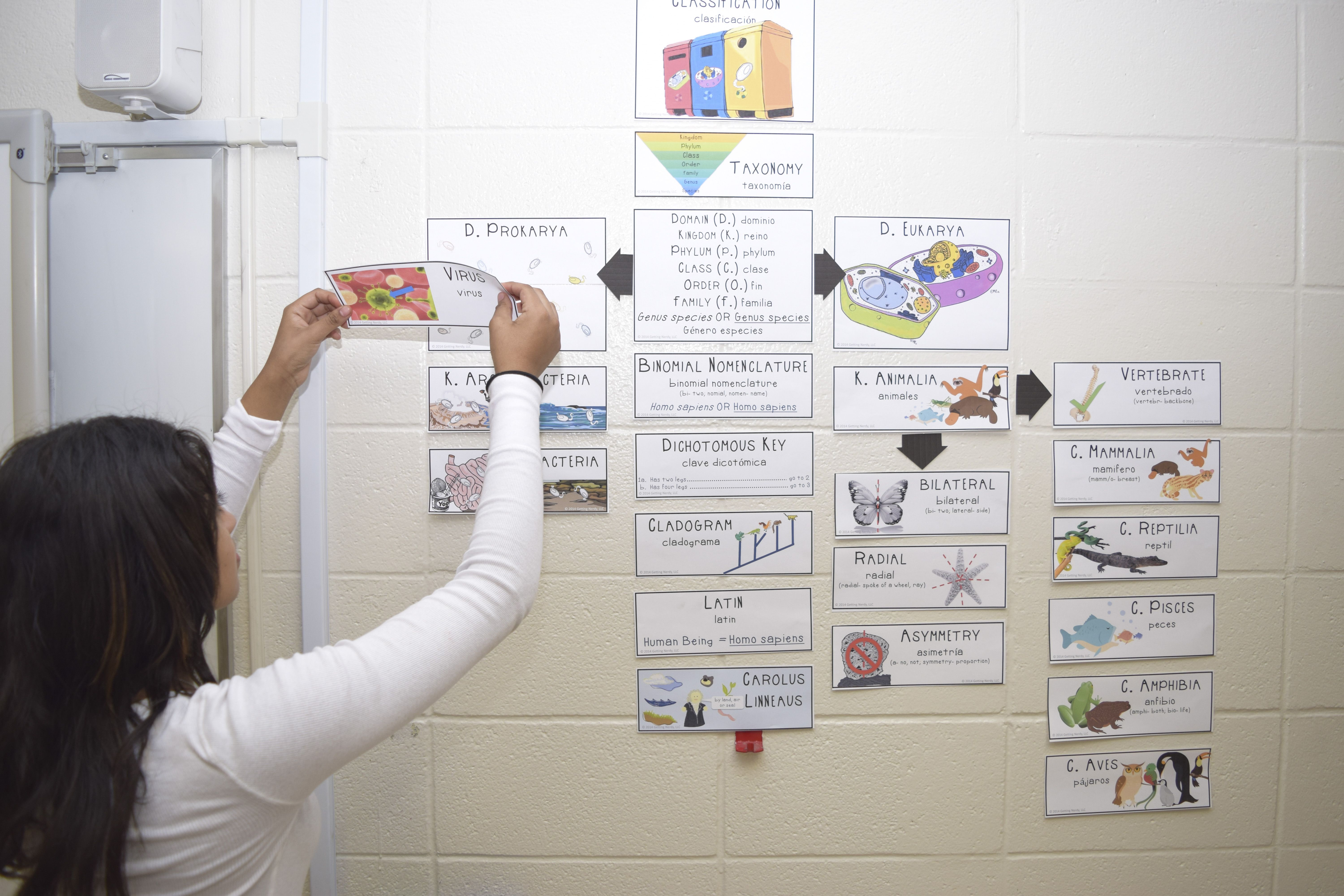 Teacher Tools Making Word Walls Accessible To All Students