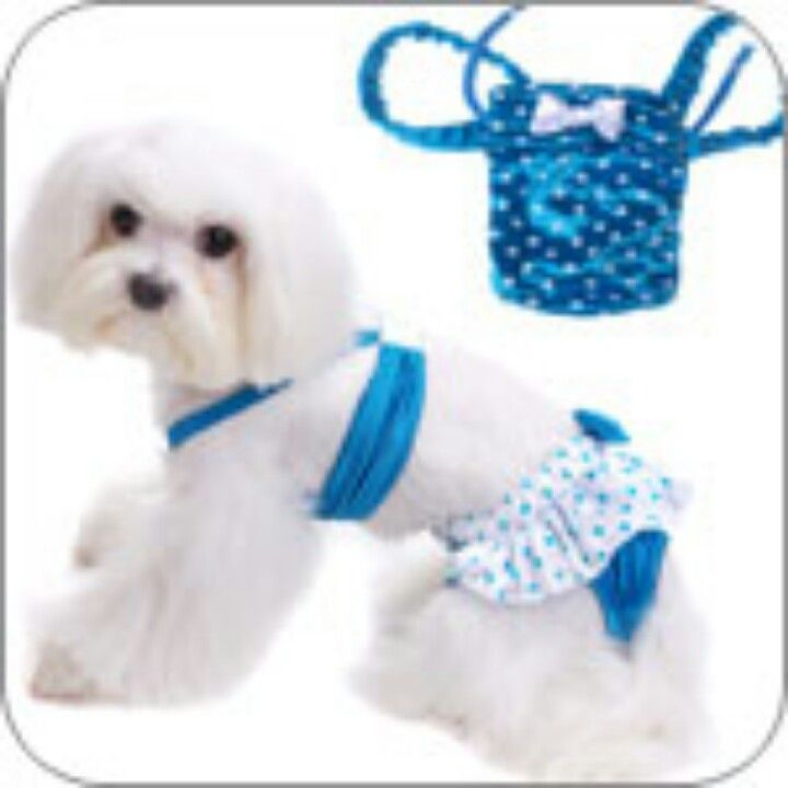 Cute Blue Bikini Dog Swimsuit Dog Clothes Designer Dog Clothes