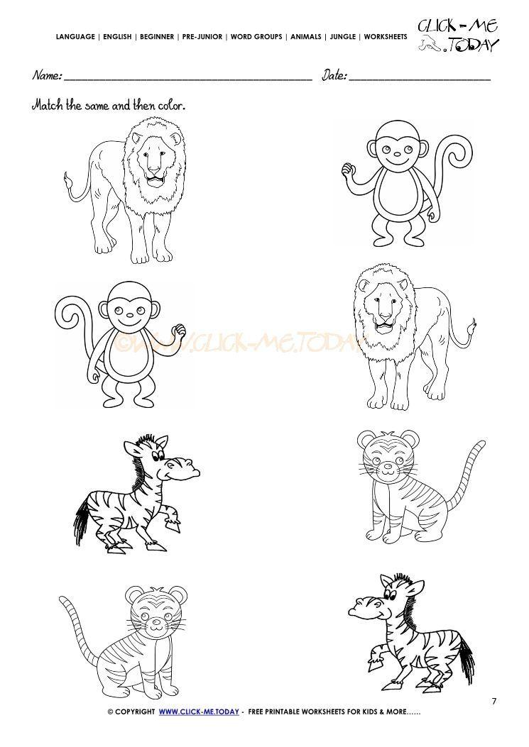 Jungle Animal Worksheet For Kindergarten In 2020 Animal Worksheets Jungle Animals Preschool Kindergarten Worksheets