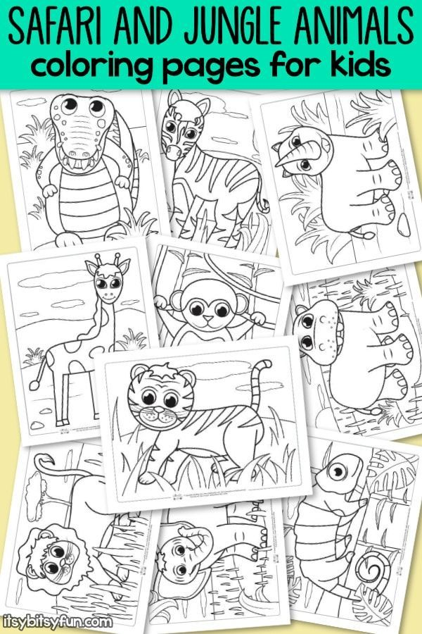 Safari and Jungle Animals Coloring Pages for Kids | Wild Animals ...