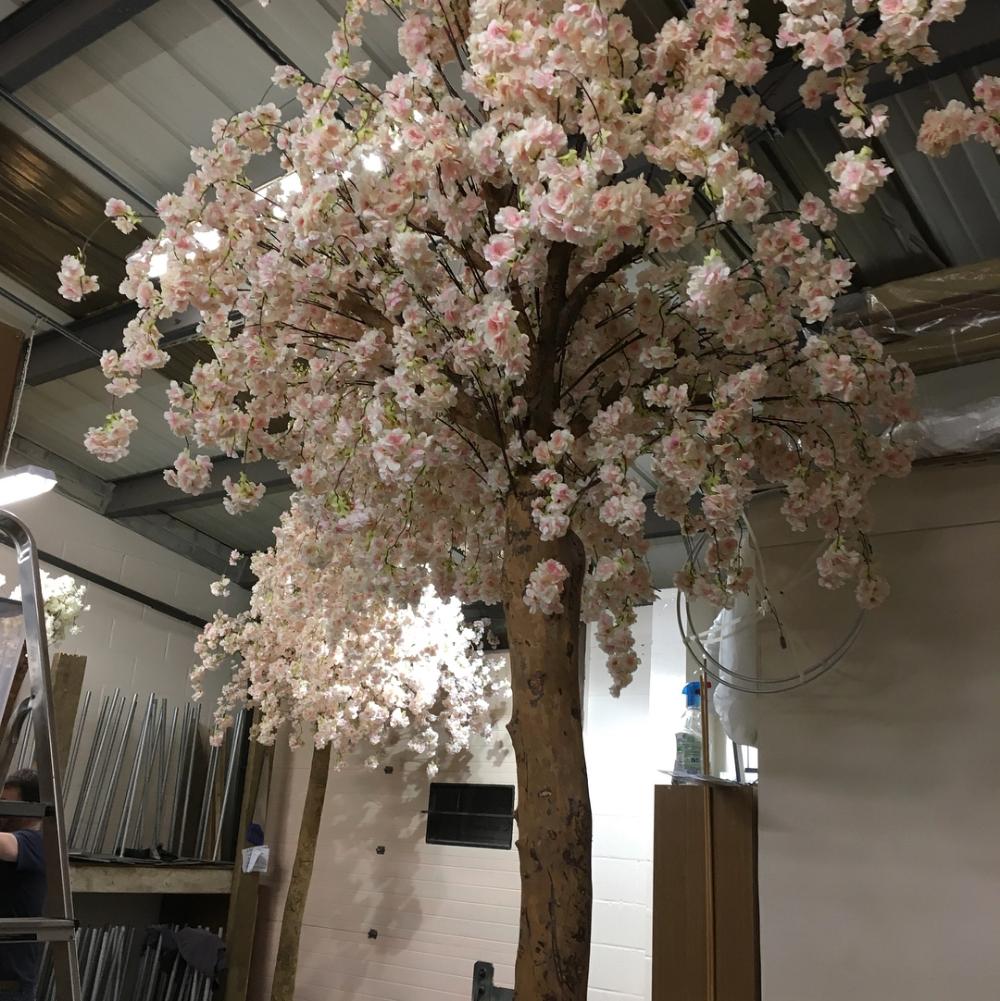 Weeping Cherry Blossom Blossom Tree Wedding Tree Wedding Centerpieces Tree Wedding
