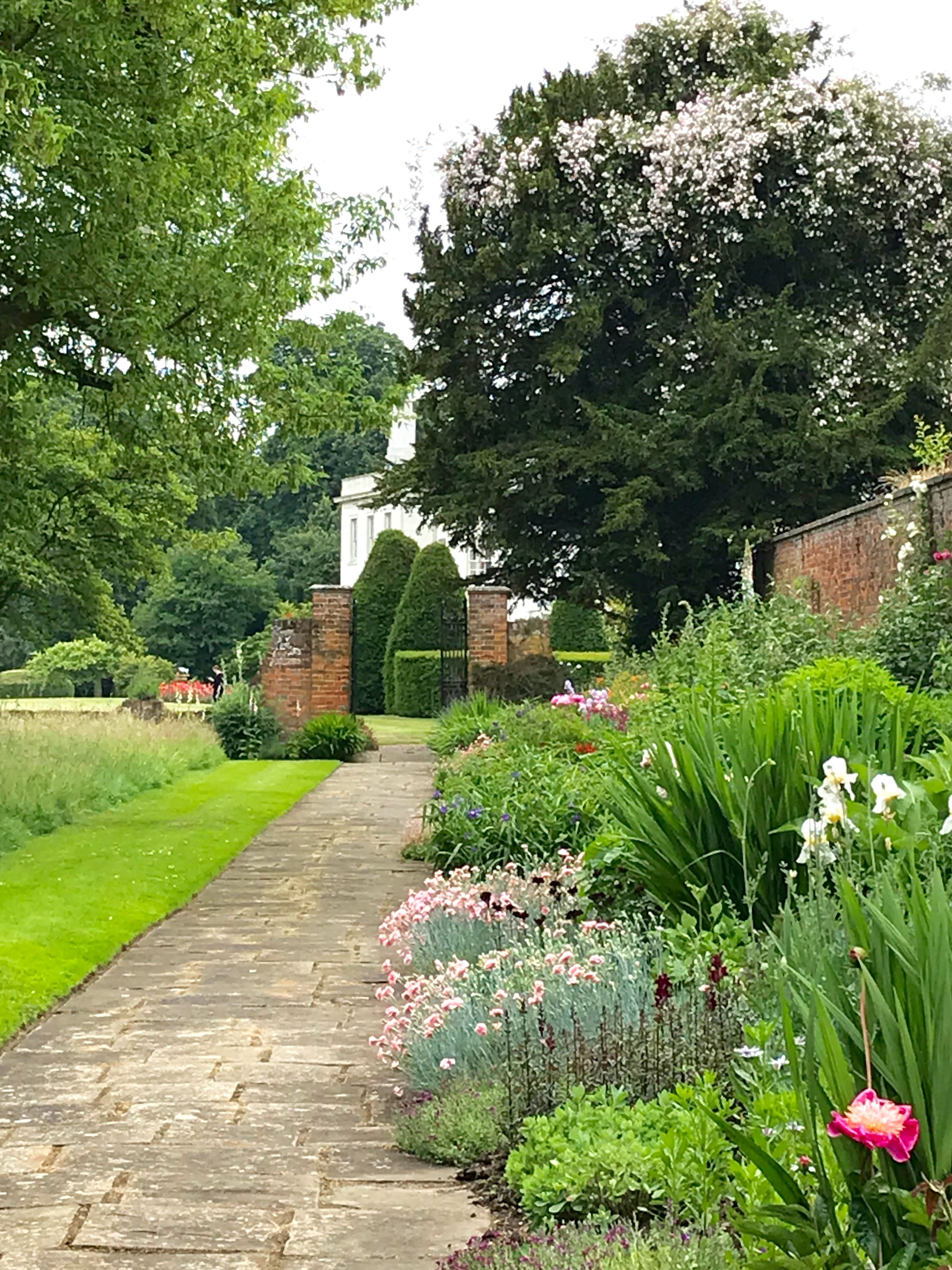 Looking Down The Herbaceous Border With The Rambling Rose Growing