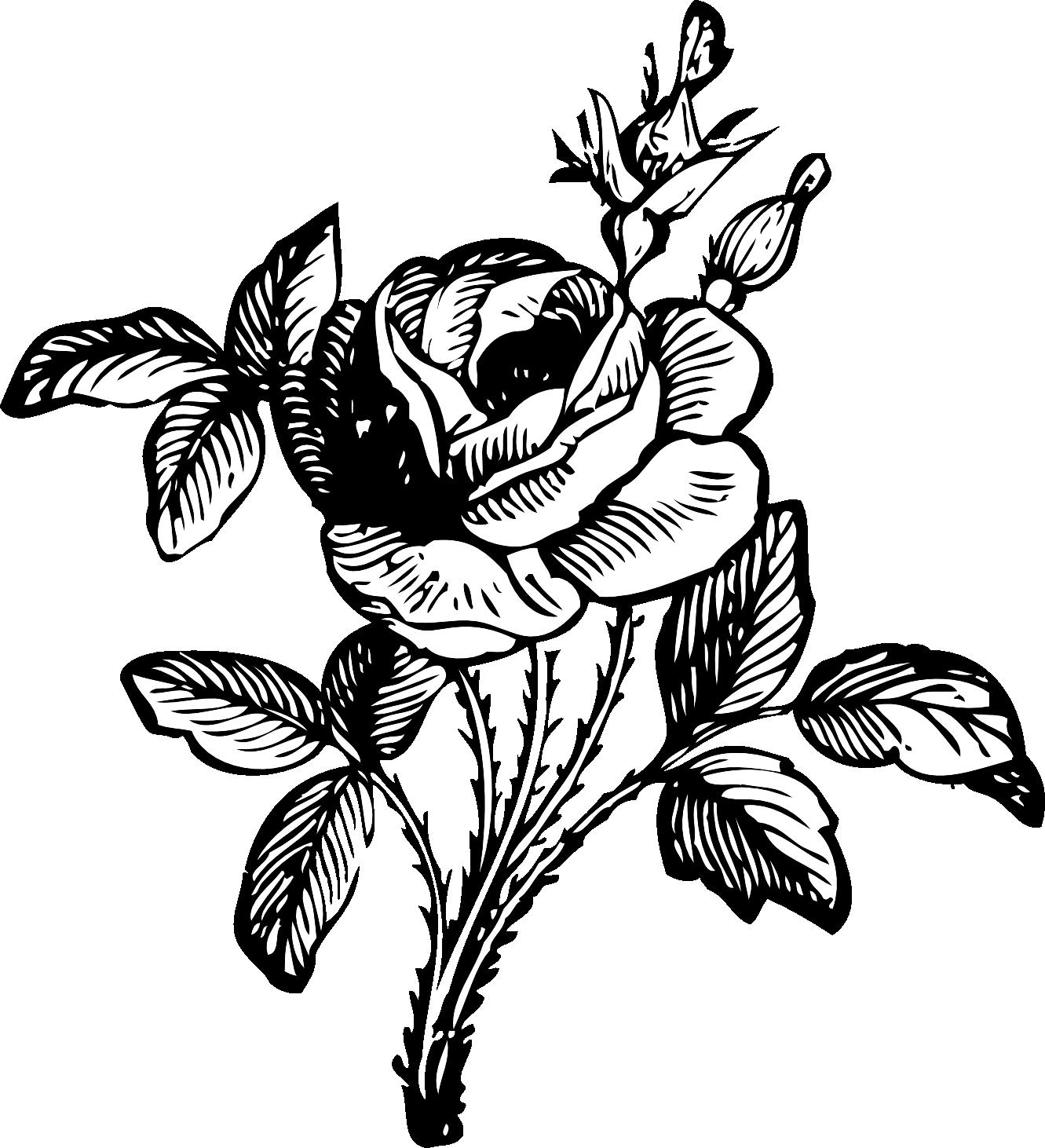 Flower Bouquet Clipart Black And White Clipart Panda