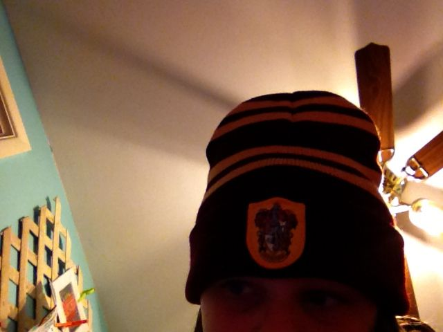 Harry potter hat