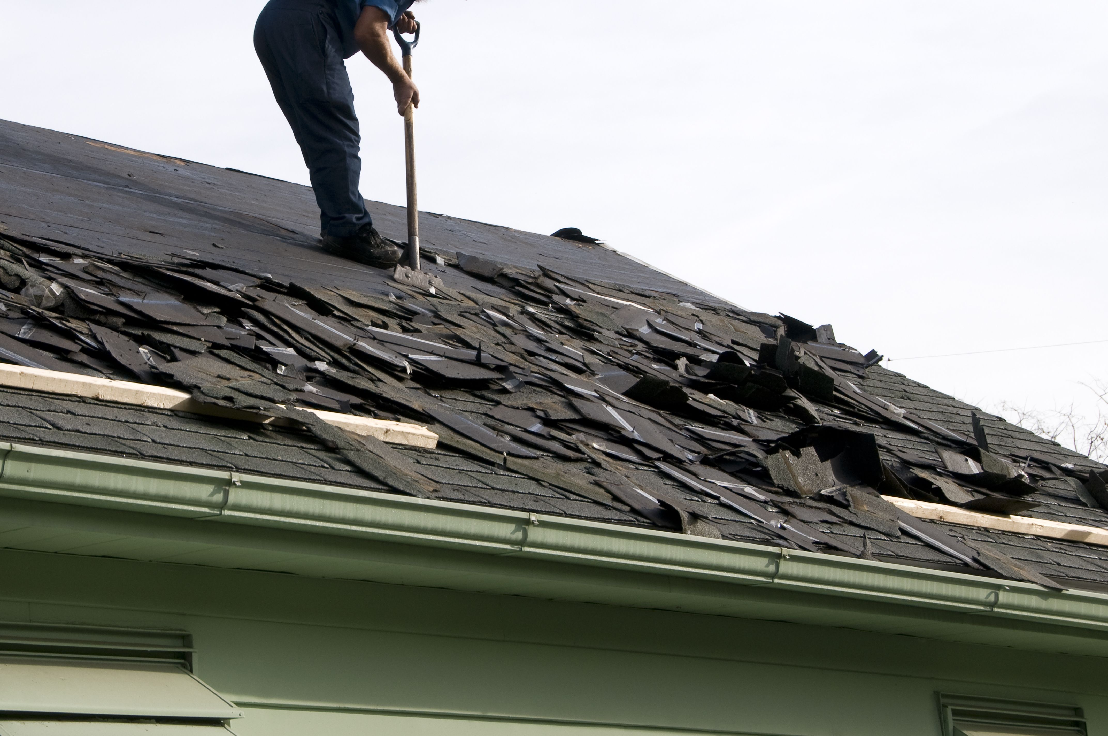 Roofing Shingles Replace Any Missing Shingles As Soon As You Notice That They Have Come Loose One Missing Metal Shingles Zinc Cladding Copper Metal Roof
