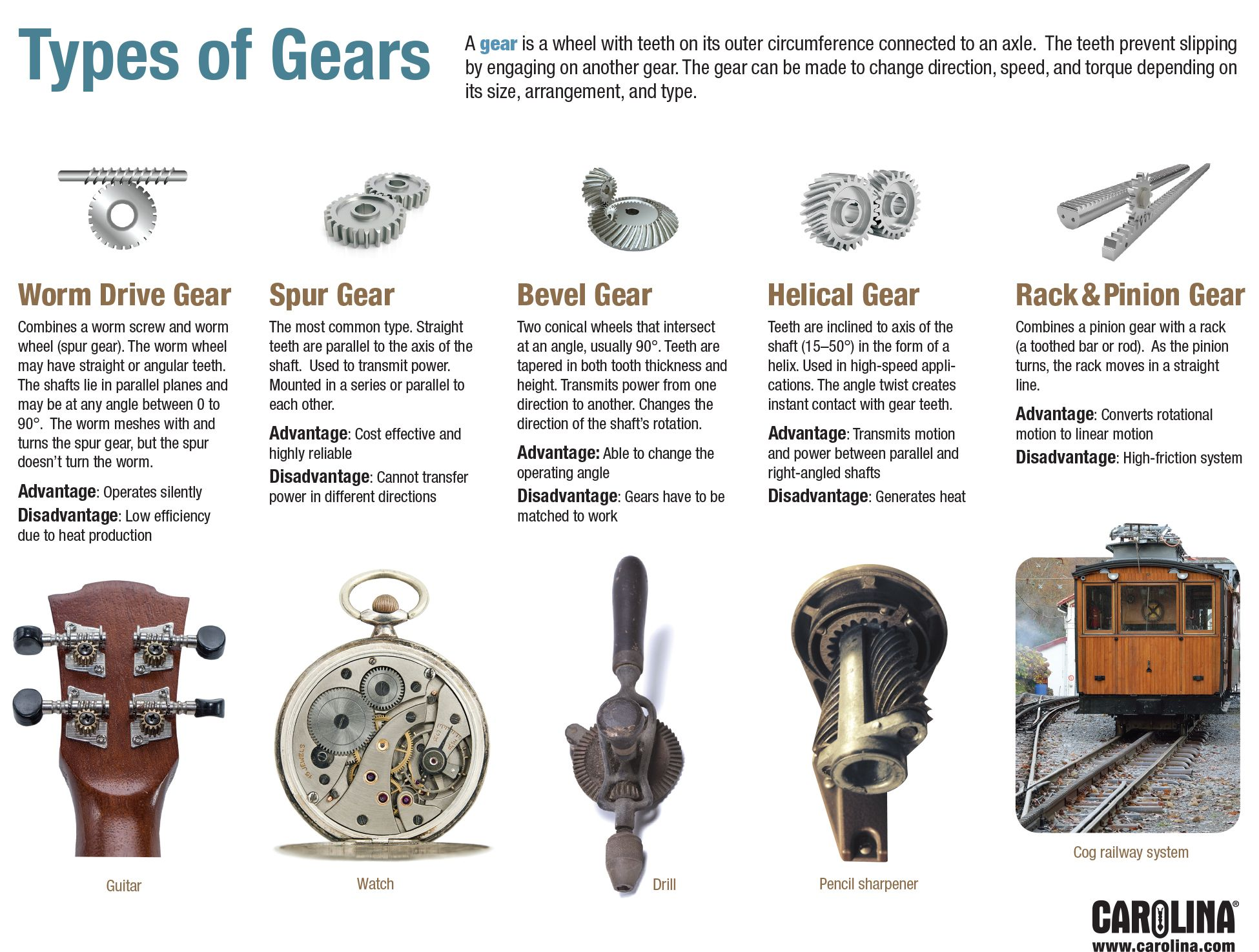 Infographic Types Of Gears Stem