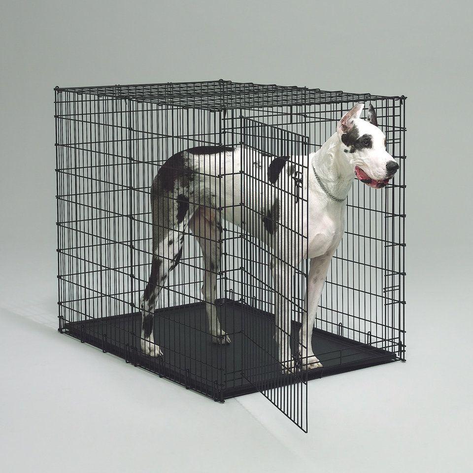 Best Indestructible Dog Crate For Large Dogs Tackk Large Dog