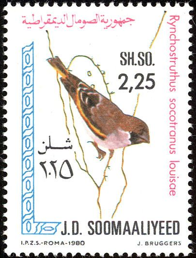 Somali Golden-winged Grosbeak stamps - mainly images - gallery format