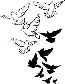 Dove Stock Photos Colourbox Com Dove Tattoo Design Dove Tattoo Hand Drawn Vector Illustrations